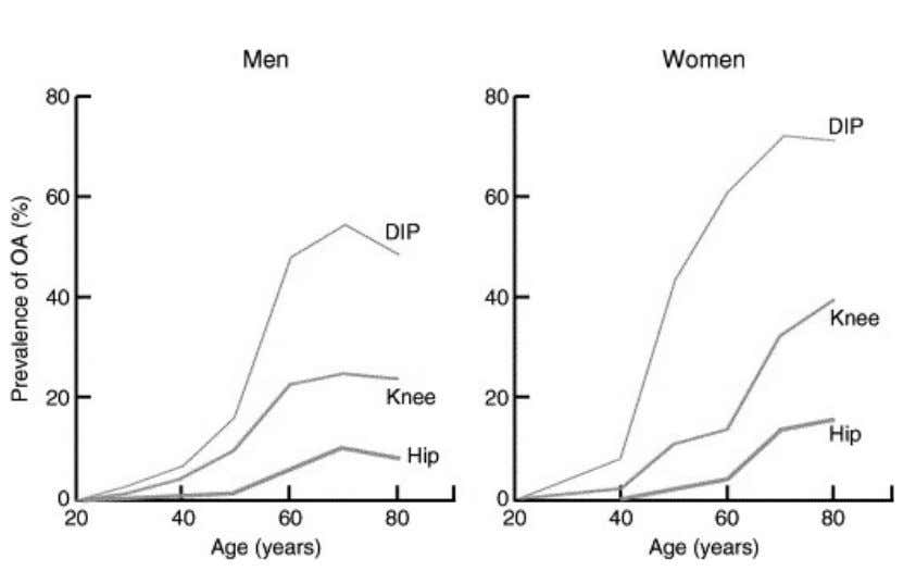 17 % in men and 30 % in women older than 60 years. 1 0 1