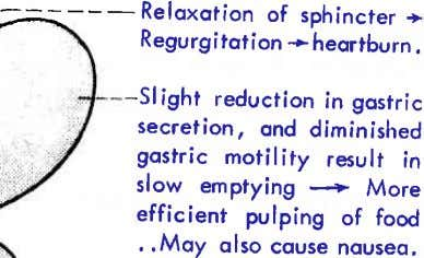 --Reloxotion of sphincter + -- Regurgitoiion * heqrtburn . -Slight reduction in gostric secrelion, ond