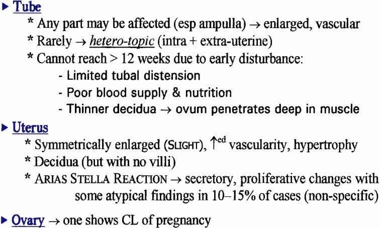 > Tube n Any partmly be affected (esp ampulla) -+ enlarged, vascular * Rarely -+