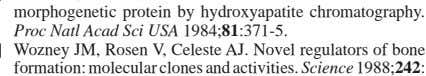 JM, Rosen V, Celeste AJ. Novel regulators of bone formation: molecular clones and activities. Science 1988;
