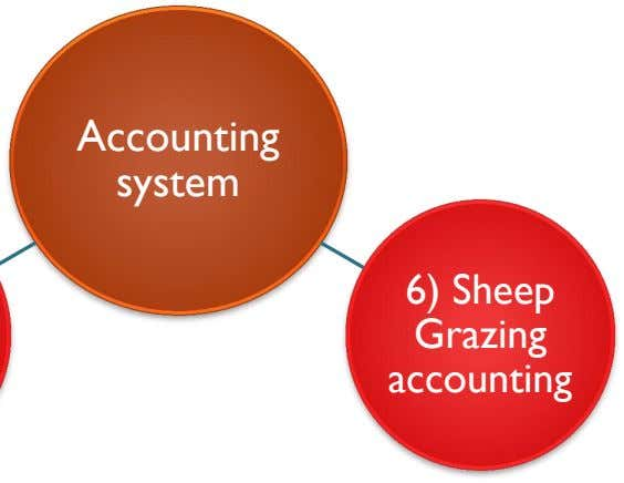 Accounting system 6) Sheep Grazing accounting