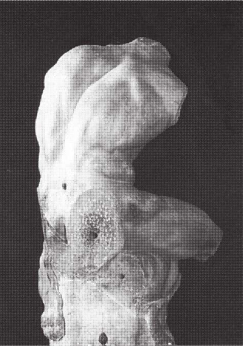 � The Belvedere Torso, Museo Pio- Clementino, Vatican Museums, Rome. sow: In fact, you begin with