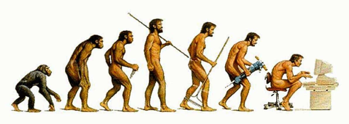 Physical Activity Evolution