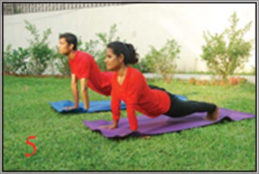 Fig. 5 (the mountain) Parvataasana Move the right foot forward and the left foot backwards