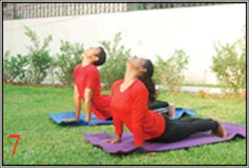 up to keep them off the ground. Hold the breath outside. Fig. 7 Sarpaasana ( the
