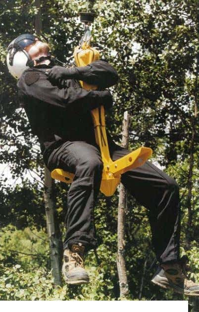 Three webbing safety straps are available to secure Figure 52- Rescue Seat (Forest Penetrator). Image copyright