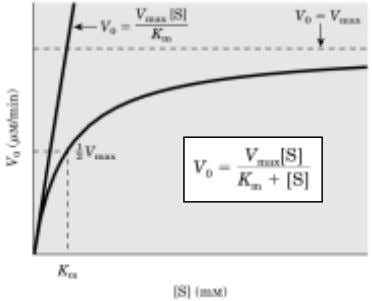 vs. [S ]; Km = [S], when V o = ½ Vmax. E + S k