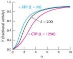 (all-or-none) ♦ Heterotrphic: ATP, CTP (- feedback)   Covalent m odification   ◊ Phosph