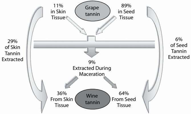 11% 89% Grape in Skin in Seed tannin Tissue Tissue 6% 29% of Seed of