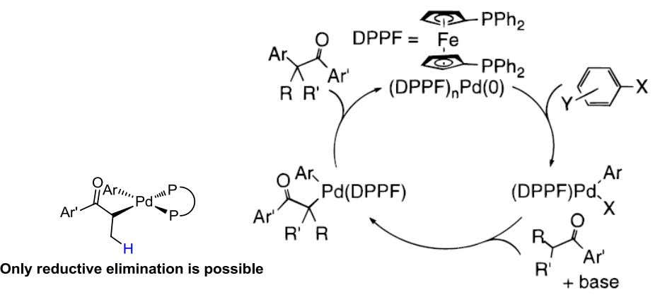 -Hydride Elimination: Occupying the free coordination site. Hamann, B. C.; Hartwig, J. F. J. Am. Chem.