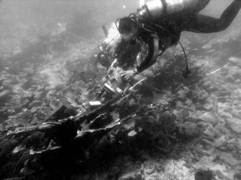 NASA Ames and University of Puerto Rico divers taking a spectral measurement with a handheld