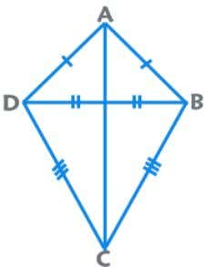 Kite Trapezium / Trapezoid A quadrilateral with exactly one pair of sides parallel is known as