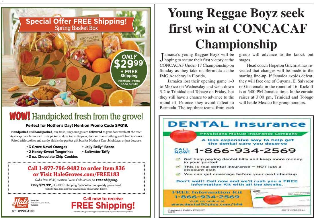 Special Offer F REE Shi pping! Spring Ba sket Box Young Reggae Boyz seek first