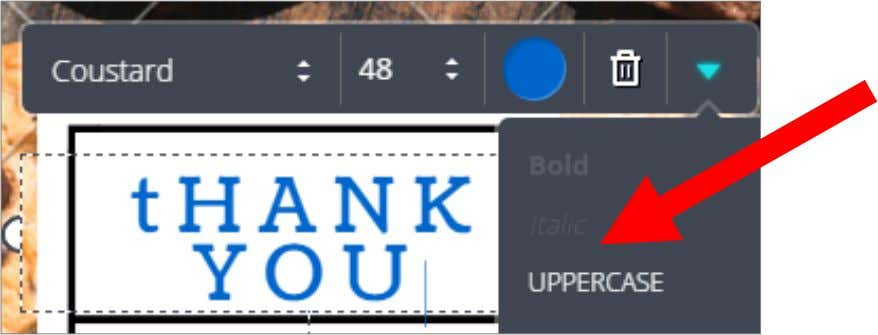 or changing fonts to UPPERCASE Marivil.Magdamit VA 56