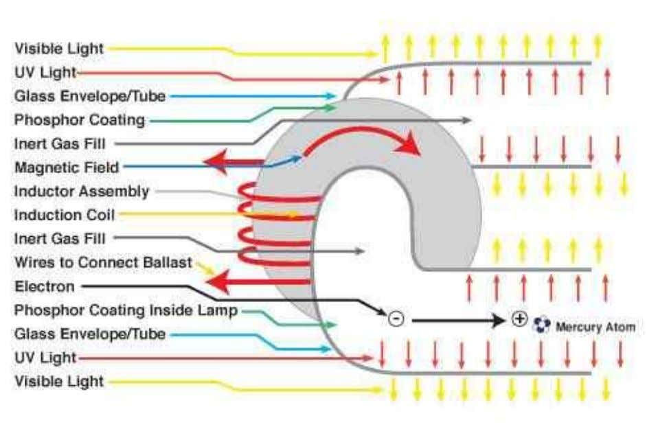 2) Internal Induction 1 ) EXTERNAL INDUCTOR LAMPS External magnetic induction lamps are essentially