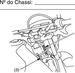 Nº do Chassi: (3)