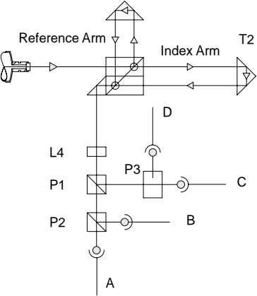 Reference Arm T2 Index Arm D L4 P3 P1 C P2 B A