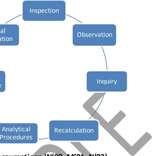 Inspection Observation Inquiry Analytical Recalculation Procedures