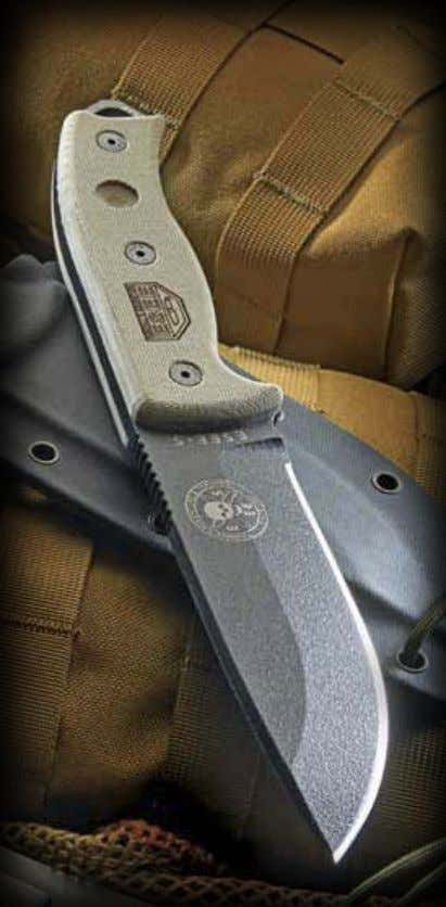 jungle survival. The gear line and ESEE knives was born from that experience, training and