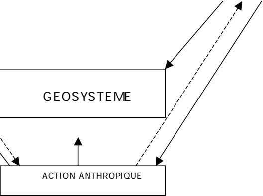 GEOSYSTEME ACTION ANTHROPIQUE