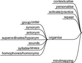 contextualise personalise activate/practice repeat group/order synonym antonym superordinates/hyponym organise