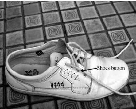 C.K. Chen / Engineering Failure Analysis 9 (2002) 185–190 Fig. 1. The practical sport shoe with