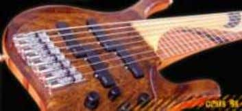 construction, extensively laminated woods and EMG pickups. http://www.mauriciobass.com MIRANDA Argentina, guitars and