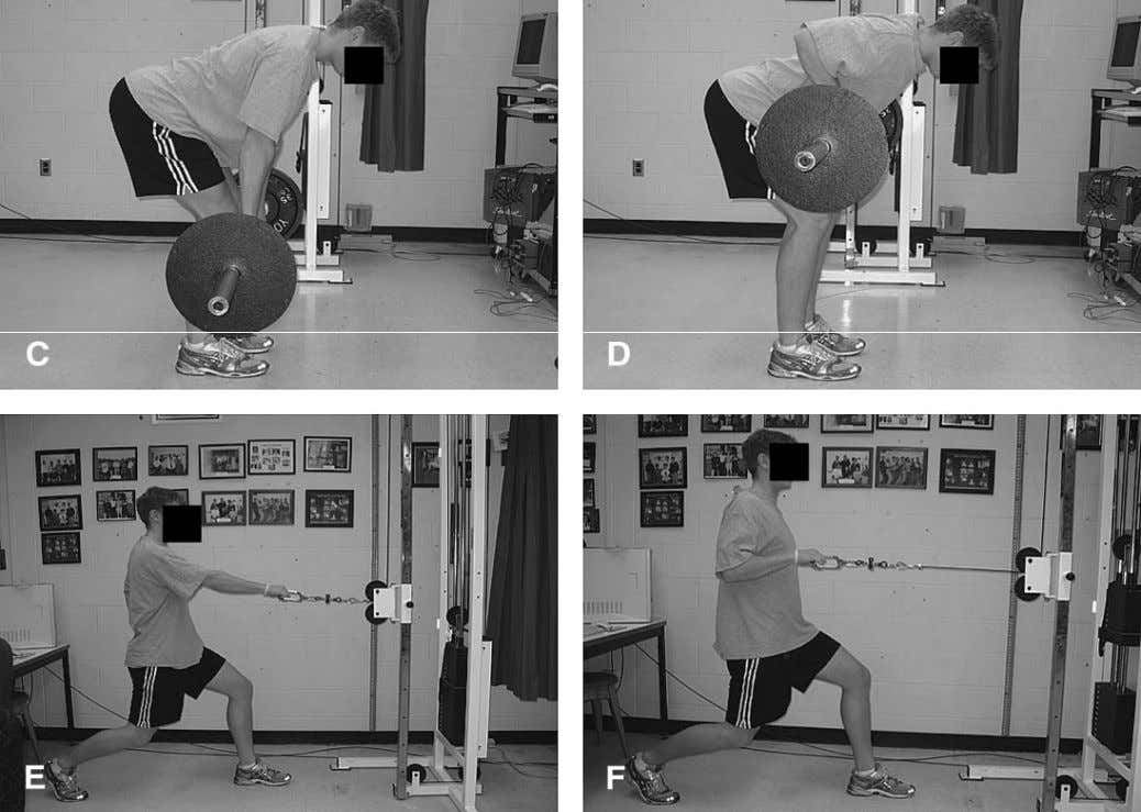 Fenwick et al ;Comparison of different rowing exercises: trunk muscle activation and lumbar spine motion,