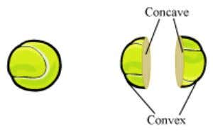 Take a tennis ball and cut it into two equal halves. The inner surface of