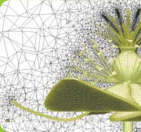 the detailed geometry for a model flower in CFX simulations. A close-up look of the meshed
