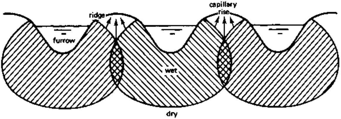 CHAPTER 3. FURROW IRRIGATION Figure 38 Different wetting patterns in furrows, depending on the soil type