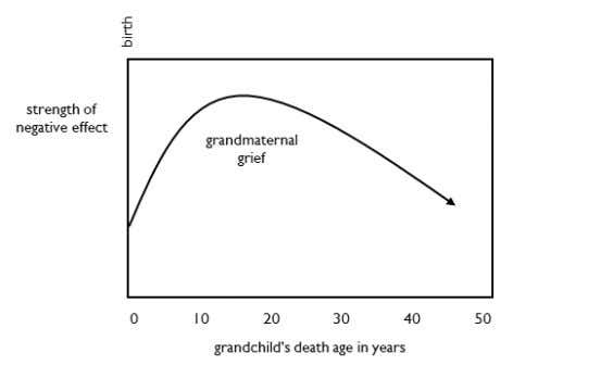 Mental Effect Grandmaternal grief varies with a grandchild's death age. The closer a grandchild was to