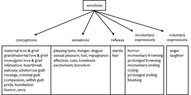 C HAPTER 2 F IVE T YPES OF E MOTION There are five types of emotion: