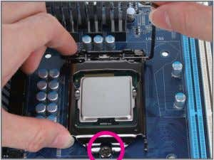 pro- tective socket cover when the CPU is not installed.) Step 4: Once the CPU is