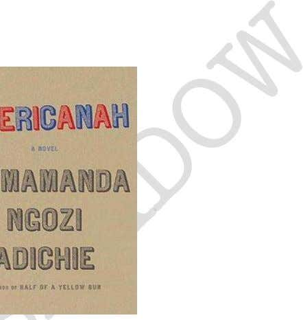 Books To Be Adapted For The Big Screens (Coming Soon) 1. Americanah Based on Chimamanda Ngozi