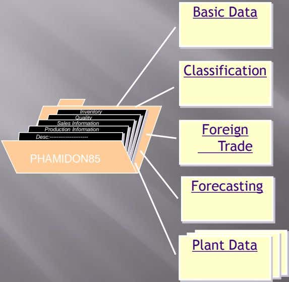 Basic Data Classification Inventory Quality Sales Information Production Information Foreign