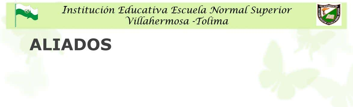 Institución Educativa Escuela Normal Superior Villahermosa -Tolima ALIADOS