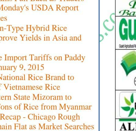 and Medium Quality Rice Varieties to Meet Philippine Demand News Detail … 28 Riceplus Magazine wwww.ricepluss.com