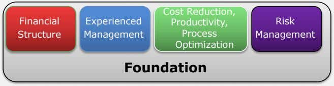 Financial Experienced Cost Reduction, Productivity, Process Optimization Risk Structure Management Management