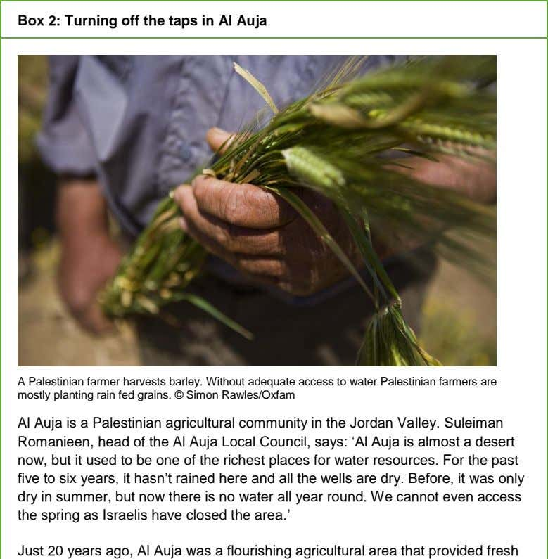 Box 2: Turning off the taps in Al Auja A Palestinian farmer harvests barley. Without