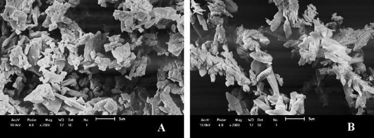 et al. / J. of Supercritical Fluids 47 (2008) 259–269 Fig. 5. SEM micrographs of the