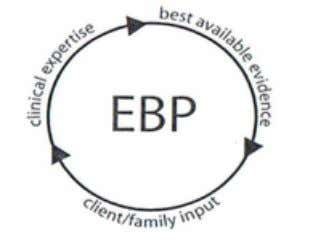 "expertise and client preferences and values into the clinical making decisions."" Guide to EBP: Linguisystem (2009)"