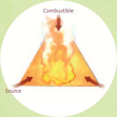 Combustible Source