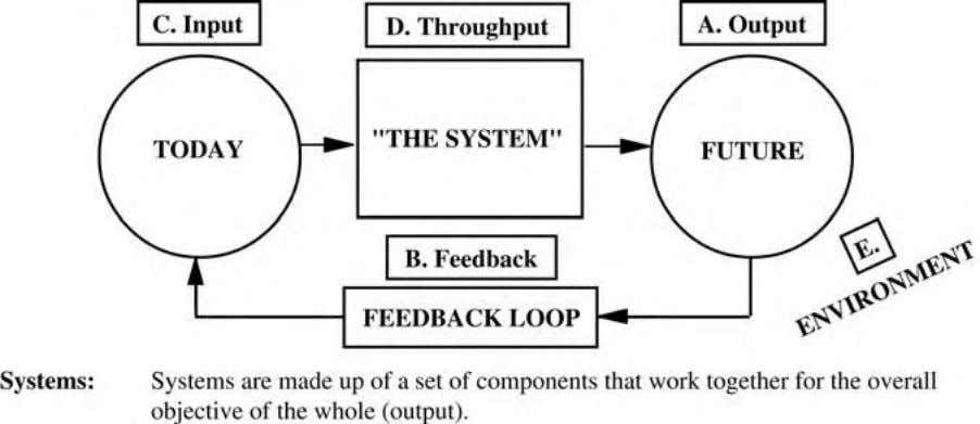The Organization: A Living, Breathing System 39 FIGURE 3.2 Systems Thinking: five key elements — from