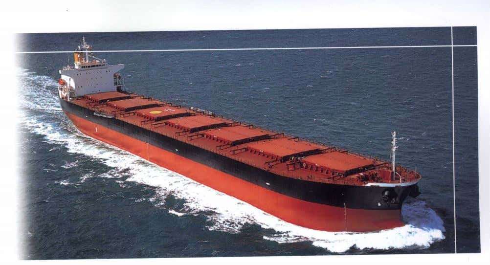 Hull & Machinery Maintenance Services Many bulk carrier owners and operators adopt maintenance procedures that
