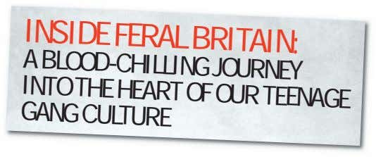 INSIDE FERAL BRITAIN: A BLOOD-CHILLING JOURNEY INTO THE HEART GANG CULTURE OF OUR TEENAGE