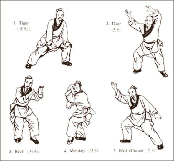 internal organs. I have created a Daoyin method called Qigong postures from Daoist physician Hua Tuo'