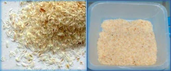 All chemicals were used without any purification process. Fig. 1: Raw psyllium husk (PH). 2.2. Preparation