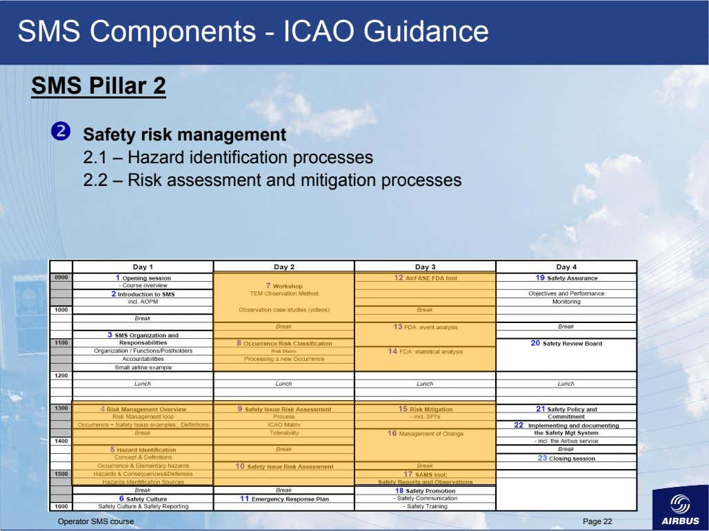 SMS Components - ICAO Guidance SMS Pillar 2   Safety risk management 2.1 – Hazard