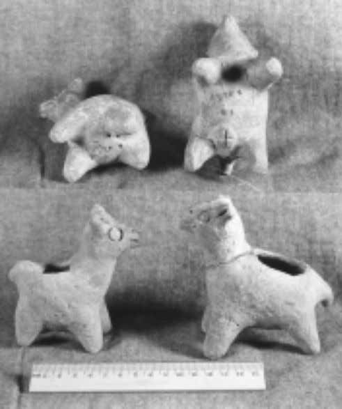Joan M. Gero Fig. 20 Recuay llama figurines from Chopijerka in the Callejón de Huaylas, collected